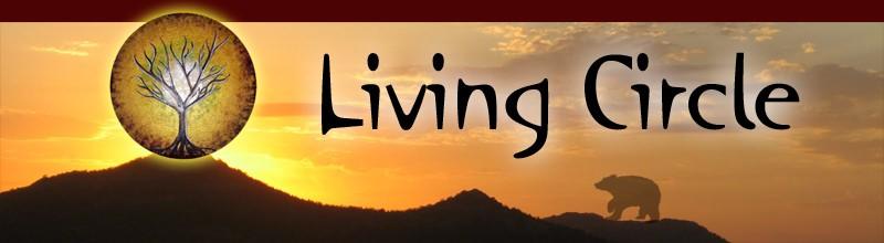 praktijk voor sjamanisme, healing, spiritualiteit, lifecoaching, drenthe